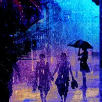 Rain and Umbrellas