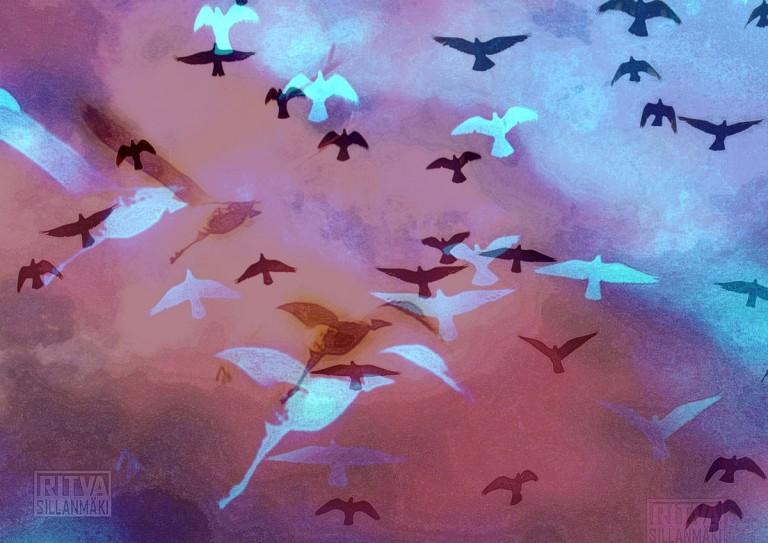 Birds in red sky