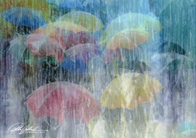 April Rain (12 of 12)